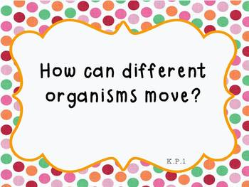 Kindergarten Science Essential Questions/I Can Statements (Essential Standards)