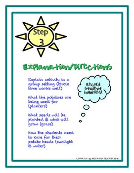 Kindergarten Science Inquiry: Potato Head Planters