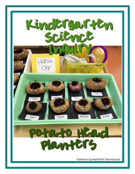 Kindergarten Science Inquiry: Potato Head Planters