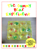 Kindergarten Science Inquiry: The Gummy Bear Experiment