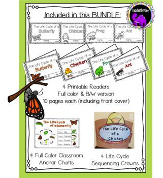 Kindergarten Science: Life Cycles BUNDLE