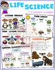 Kindergarten Science – Life Science