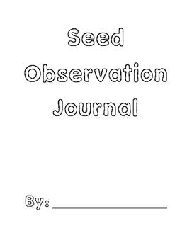 Kindergarten Science Plants