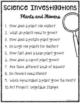 Kindergarten Science: Plants and Flowers-10 FULL Experiments & Science Journals