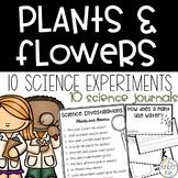 Kindergarten Plants Flowers Experiment Science Journals