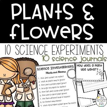 Kindergarten Science: Plants and Flowers-10 Full Experimen