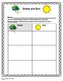 Kindergarten Science - Sun & Shade Observations