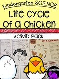 Kindergarten Science: The Life Cycle of a Chicken