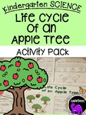 Kindergarten Science: The Life Cycle of an Apple Tree