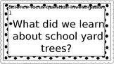 Kindergarten Science Trees Focus Questions
