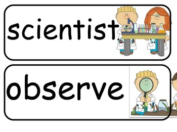 Kindergarten Science Word Wall Cards