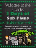 Kindergarten Sub Plans - A Sub Binder