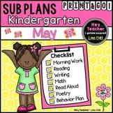 Kindergarten Sub Plans (May-Spring)
