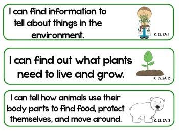 Kindergarten Super Standards- SOUTH CAROLINA Science/Social Studies