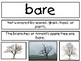 Kindergarten Tennessee Unit Starter Vocabulary Cards- Earth science- weather