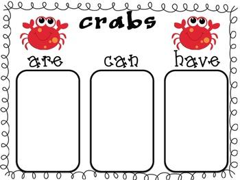 Kindergarten, Theme 13 Literacy By Design Graphic Organizers