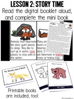 Kindergarten Vocabulary Curriculum Set 3