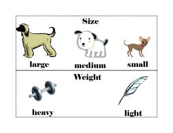 Kindergarten Vocabulary Word Cards
