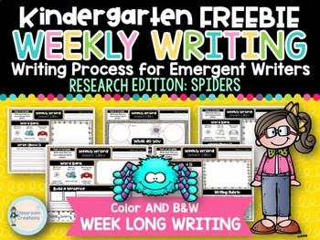 Kindergarten Weekly Writing FREEBIE (Spider Research Edition)