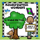 Kindergarten Wonders A Grand Old Tree Unit 5 Week 2