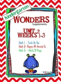 Kindergarten Wonders (2014) Reading Supplement ~ Unit 2 Bundle