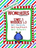 Kindergarten Wonders Reading Supplement ~ Unit 3 Bundle
