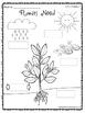 Kindergarten Wonders (2014) Reading Supplement ~ Unit 5 Bundle