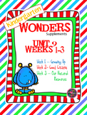 Kindergarten Wonders Reading Supplement ~ Unit 9 Bundle