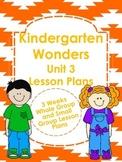 Kindergarten Wonders Unit 3 Lesson Plans