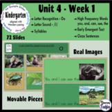 Kindergarten ELA Slides (aligned with Wonders Unit 4 Week 1)