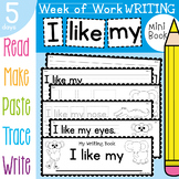 Writing Book - I like my - 5 Days of Writing