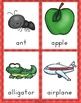 Kindergarten and Preschool Apple Theme Unit