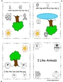 Kindergarten sight word mini book