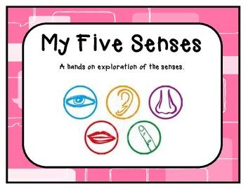 Kindergaten Five Senses