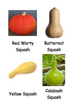 Kinds of Pumpkins & Squash Cards