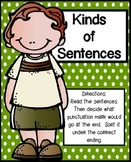 Kinds of Sentences Literacy Center