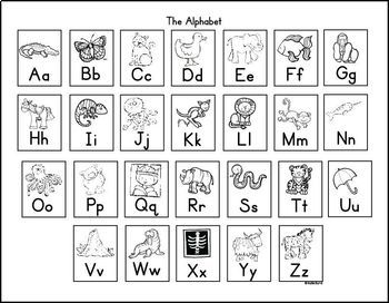 Kinesthetic Alphabet Chart for Students FREE!