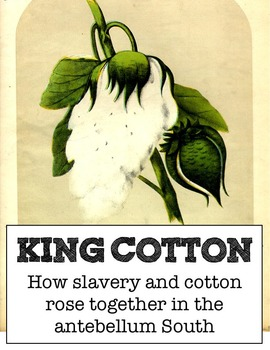King Cotton: the rise of slavery in the South - student in