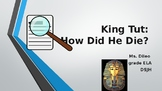 King Tut: Prove Your Theory