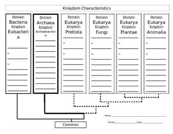 Kingdom Characteristics Note Organizer