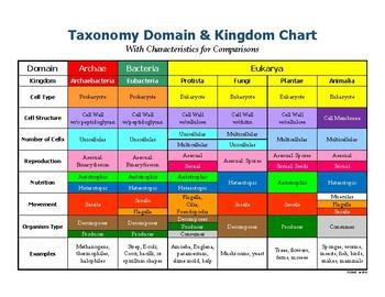 Kingdom Classification Chart/Poster