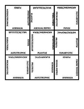 Kingdom Classification Puzzle Scramble