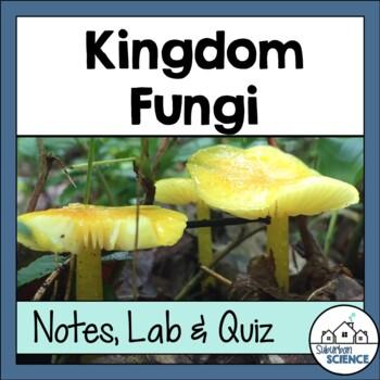 Characteristics of Kingdom Fungi: Powerpoint, Interactive Notebook, Lab, Quiz