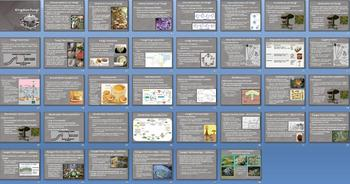 Kingdom Fungi Fungus Smartboard Notebook Presentation Lesson Plan