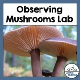 Structures in Kingdom Fungi: Observing Mushrooms Lab Activity