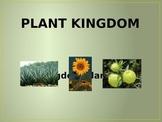 Kingdom Plantae Poerpoint