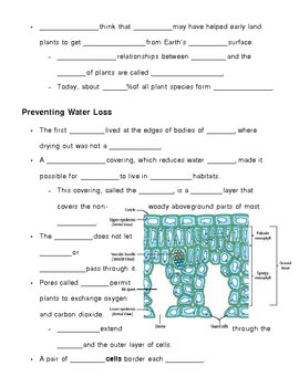 Kingdom Plantae - Plants Notes Outline Lesson Plan