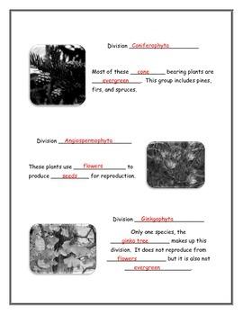 Kingdom Plantae Student Notetaking Guide