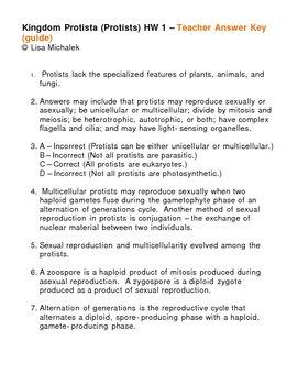 Kingdom Protista - Protists Homework Assignment 1