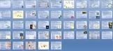 Kingdom Protista Protists Unit Bundle - 9 files